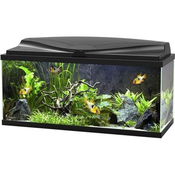aquarium 100l achat vente aquarium 100l pas cher cdiscount. Black Bedroom Furniture Sets. Home Design Ideas