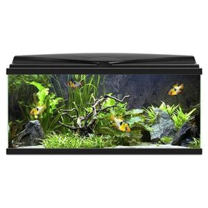 aquarium 100 litres achat vente pas cher. Black Bedroom Furniture Sets. Home Design Ideas