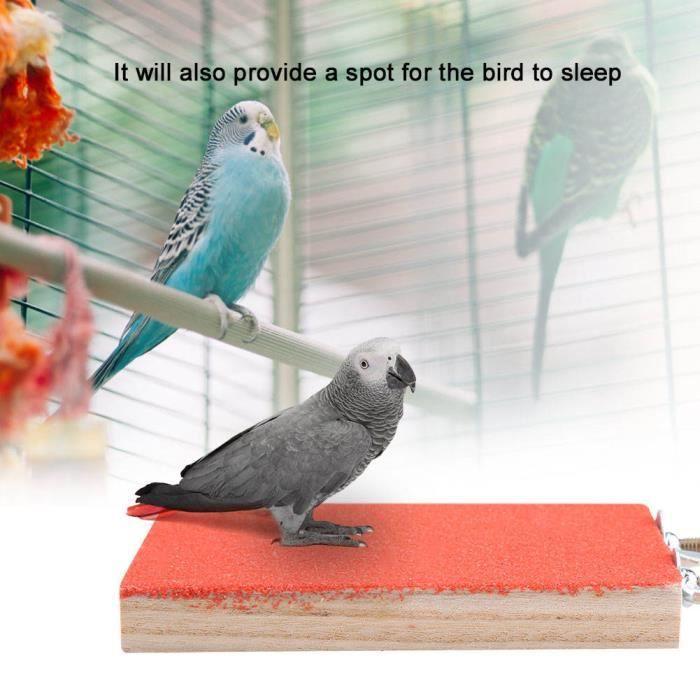 Fdit perche d'oiseau pour Cage Oiseau perche support plate-forme jouet terrain de jeu meulage de patte pour animal de compagnie