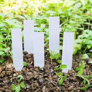 100pcs Plantes /Étiquettes Jardinage Serre PVC Plante Balises /Étiquettes Jardin Tags Blanc Produits de Maison