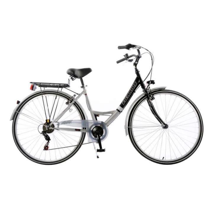 Vélo Ficarius trekking - Argent et Noir