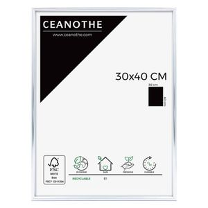 CADRE PHOTO Cadre photo Expo argent 30x40 cm - Ceanothe, marqu