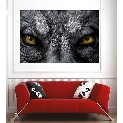 Affiche poster d coration murale yeux de loup r f 7804327 for Decoration murale loup