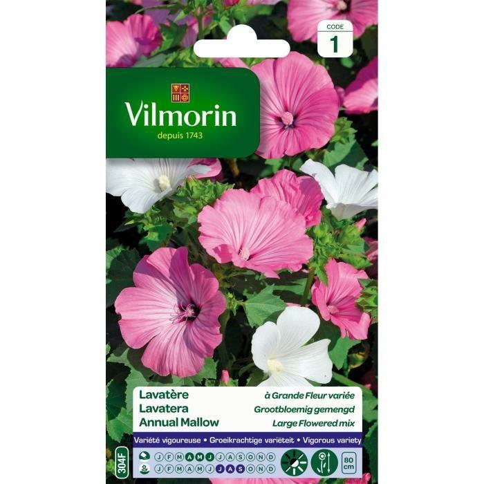VILMORIN Lavatère à grande fleur variée