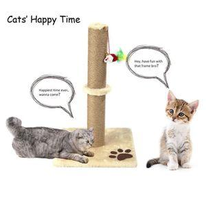 Livr/é dans Un Emballage Cadeau Chat dangle avec /énergie Solaire moses Ed The Cat Chat Porte-Bonheur