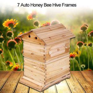 CAISSE BOIS Boîte superbe de maison de couvée d'apiculture pou
