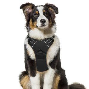 HARNAIS ANIMAL Gilet pour chien/Harnais Chien- Noir taille L -- R