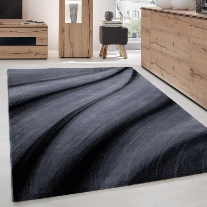 TAPIS Ayyildiz - Tapis de salon moderne designe vague Mi