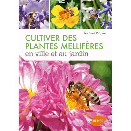 Cultiver des plantes mellifères en ville et au jar
