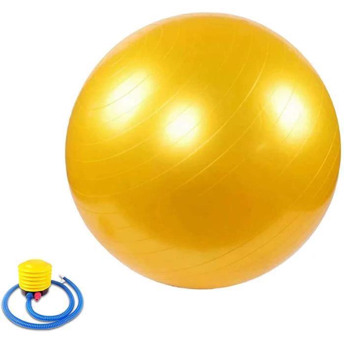 n dexercice Gym Ball Anti Burst Ballon Suisse avec Pompe 45cm 55cm 65cm 75cm 85cm 95cm pour Fitness Pilates Yoga GymBALL 1010