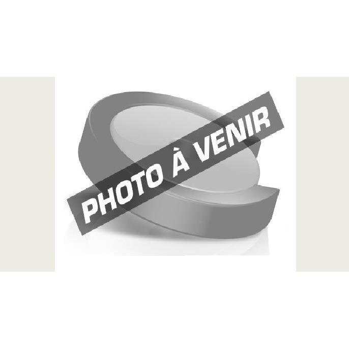 Photo de trottinette-electrique-egret-ten-700