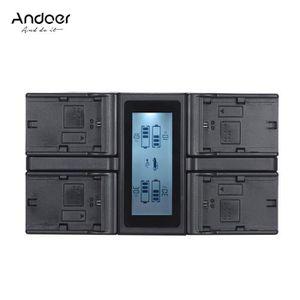 BATTERIE APPAREIL PHOTO Andoer LP-E6 LP-E6N LCD 4 Canaux Chargeur de batte