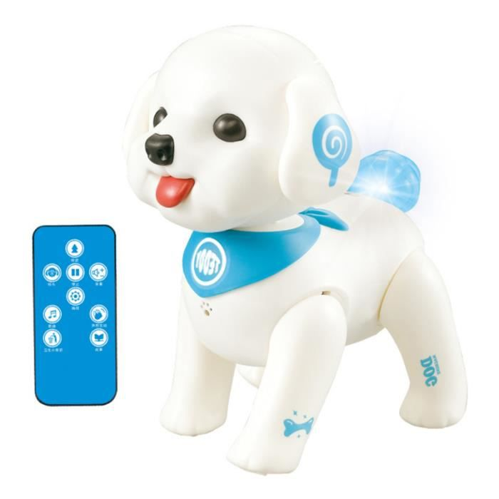 1 PC Programmable Singing Dancing RC Poodle pour Home Park School BROSSE - GANT DE BROSSAGE - CARDE