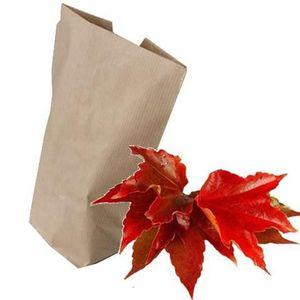 CIRCULATION SANGUINE feuilles de vigne rouge 1kg (coupées)
