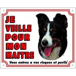 Vadigran Panneau Border Collie