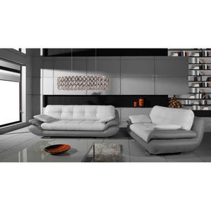 canape cuir 2 places gris achat vente canape cuir 2 places gris pas cher black friday le. Black Bedroom Furniture Sets. Home Design Ideas