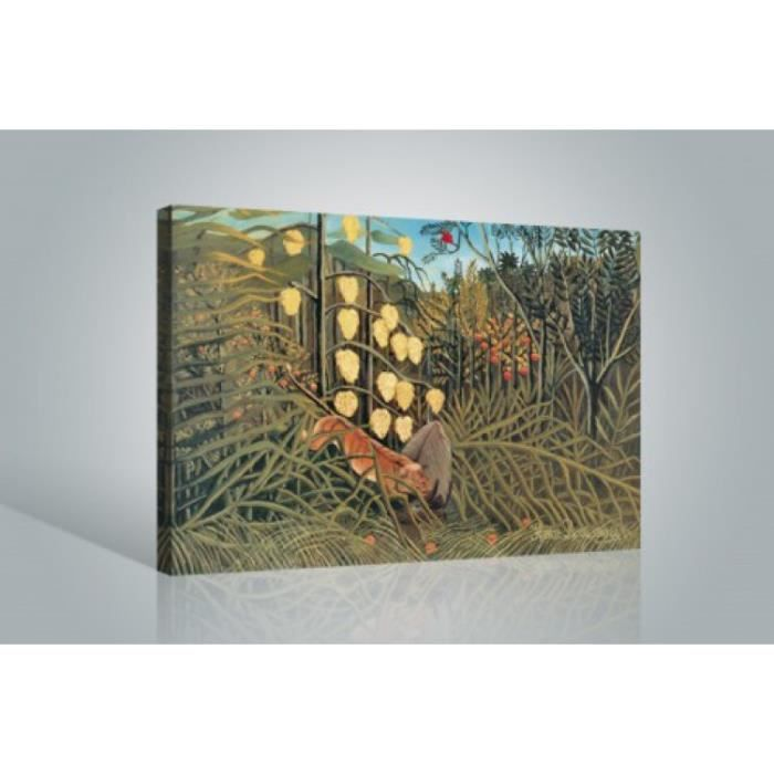 henri rousseau poster reproduction sur toile tendue sur. Black Bedroom Furniture Sets. Home Design Ideas