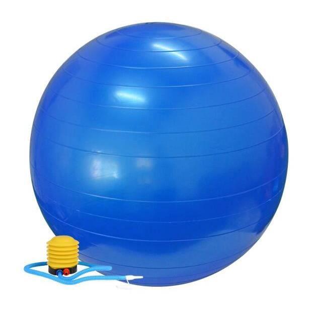 Swiss Ball Ballon de Fitness Gymnastique pour Pilates Yoga Renforcement du Dos avec Pompe Ballon - Bleu Diamètre 65 cm Taille S