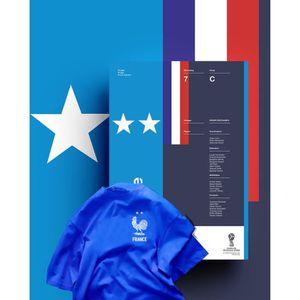 POLO bleu maillot Équipe de france deux étoiles coupe d