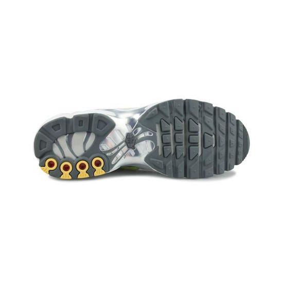 Basket Nike Air Max Plus Tn Se Platine Cd1533-002 - Cdiscount ...