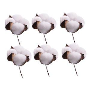 FLEUR ARTIFICIELLE 6pcs fleurs de coton séchées simples tiges de coto
