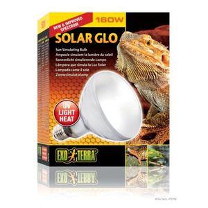ÉCLAIRAGE Exoterra Ampoule et Solar Glo pour Reptiles et Amp