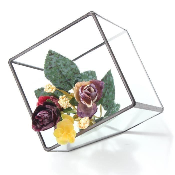 Boîte cube verre vase pot irrégulière pour planteur succulent S Bo18959