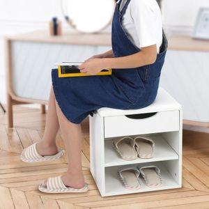 MEUBLE À CHAUSSURES Banc Rangement à Chaussures Coussin Confortable Ét