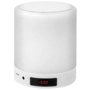 ENCEINTE NOMADE Enceinte Bluetooth sans fil Forever BS-700 - Fonct