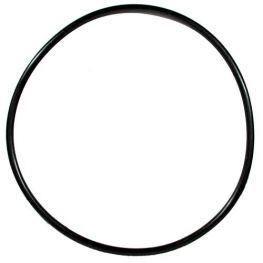 O-Ring Ex 1200