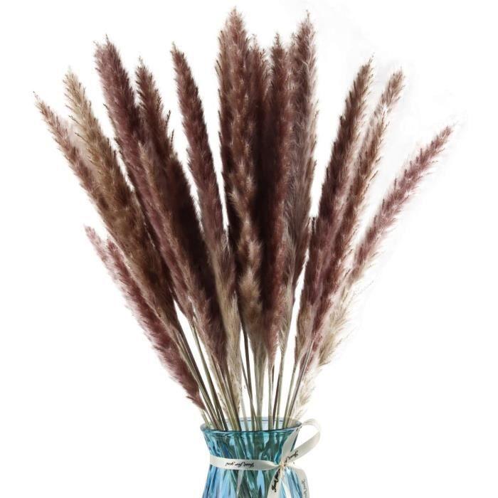 30PCS Herbe de Pampa S&eacutech&eacutees Naturelle,Bouquet d'herbe de à Fleurs de Roseau,Pampas Florales Artificielles 571