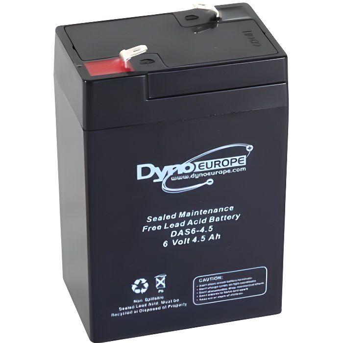 Batterie Plomb Acide AGM 6 V 4AH Piles Rechargeable