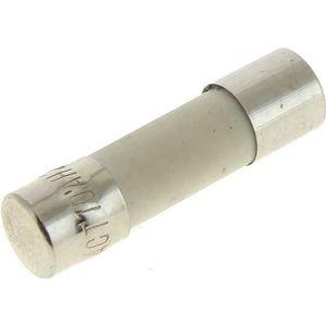 MICRO-ONDES Fusible 10a 5x20 ceramique pour Four Bosch, Micro-