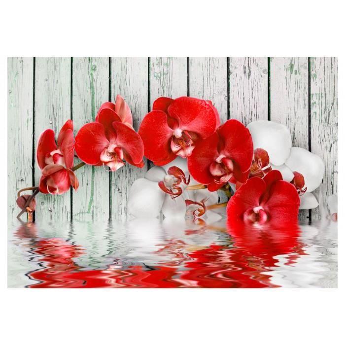 taille 350x245 sublime Papier peint nature, plantes, orchidees, eau, fleurs, bois