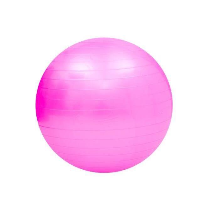 Swiss Ball Ballon de Fitness Gymnastique pour Pilates Yoga Renforcement du Dos avec Pompe Ballon - Rose Diamètre 65 cm Taille S
