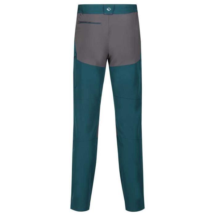 Vêtements Homme Pantalons Regatta Questra Ii Pants Regular