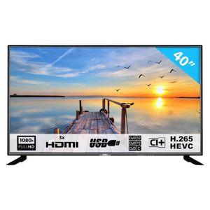 Téléviseur LED 40F1N 101,6 cm (40 Pouces) LED téléviseur (Full HD