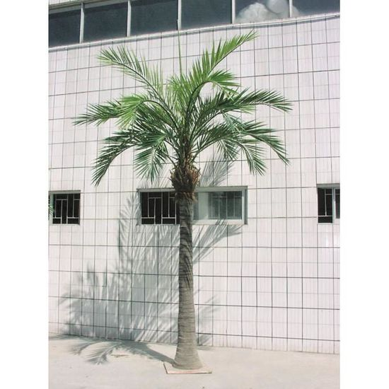 Palmier Phoenix Artificiel-300cm