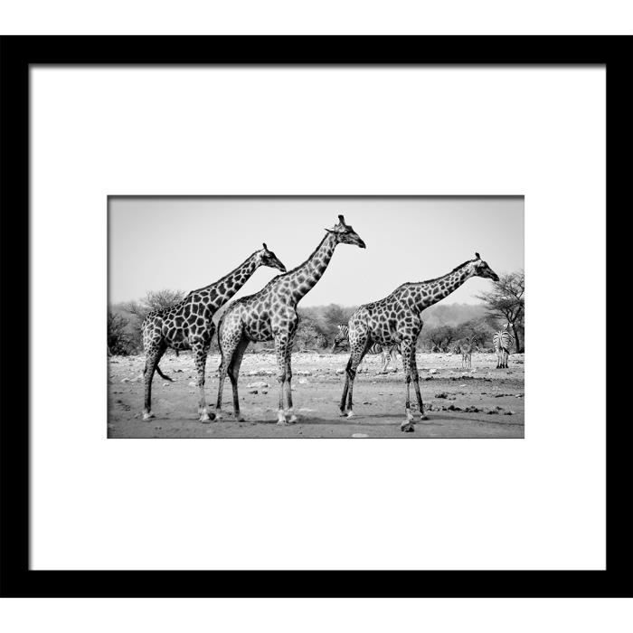 image encadr e girafes 50x60 cm gris achat vente tableau toile bois cdiscount. Black Bedroom Furniture Sets. Home Design Ideas