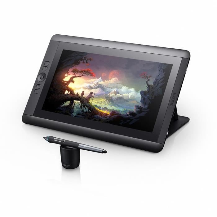 TABLETTE GRAPHIQUE Wacom Cintiq 13HD tablette graphique - Surface act