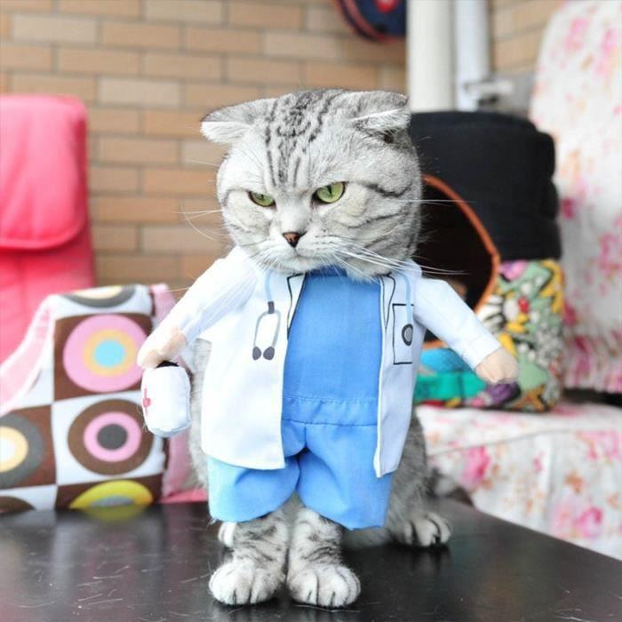 Manteau Blouson,Vêtements amusants pour chats Déguisement Pirate pour chat, Costume corsaire d'halloween pour - Type doctor-S
