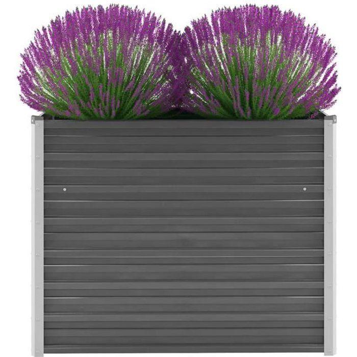 Magnifique Economique Haute qualité Luxueux Jardinière Acier galvanisé 100 x 40 x 77 cm Gris