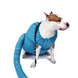 SÉCHOIR - PULSEUR Séchoir pour chien à séchage rapide pour outil de