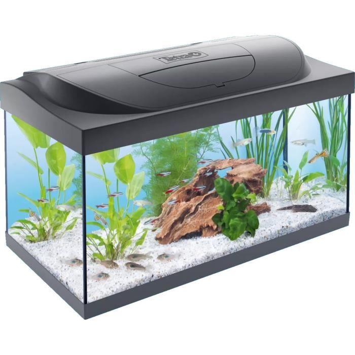 TETRA Aquarium Starter Line LED 54 L - Pour poisson