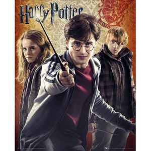 harry potter 7 poster achat vente harry potter 7 poster pas cher cdiscount. Black Bedroom Furniture Sets. Home Design Ideas