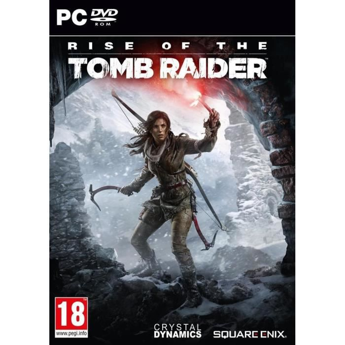 jeux pc video console r rise of tomb raider