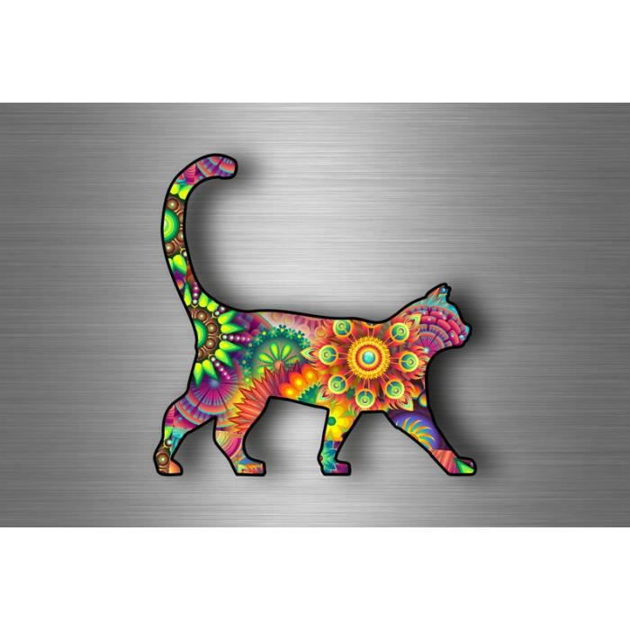 Akachafactory Autocollant Sticker Voiture Moto Animal Animaux Bebe Chat Chaton Gris Enfant