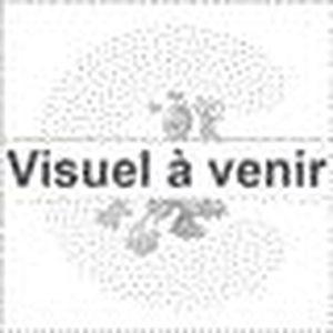 CUISINIÈRE - PIANO FALCON - PROP110EISSC