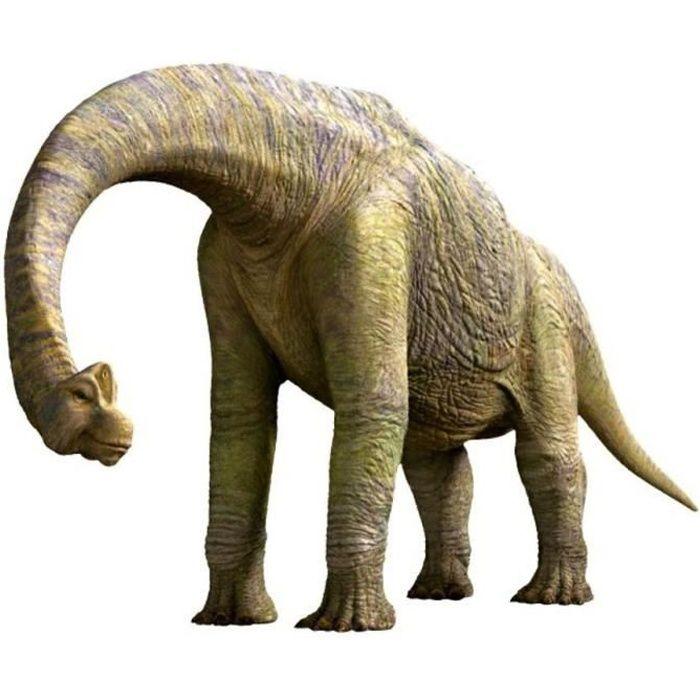 Personnalisé Dinosaure T Rex Fête D/'anniversaire Rond Autocollants Étiquettes Parti Feuille