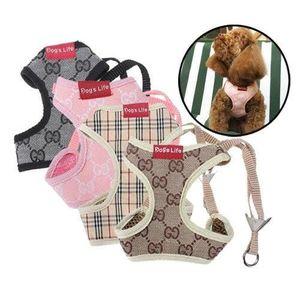 ANTI-FUGUE - CLOTURE Confort de, gilet, pour petits chiens et chats, ha